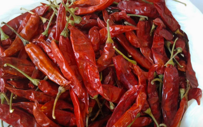 Dry red chilis