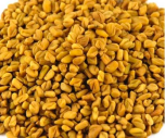 Methi or Fengreek seeds